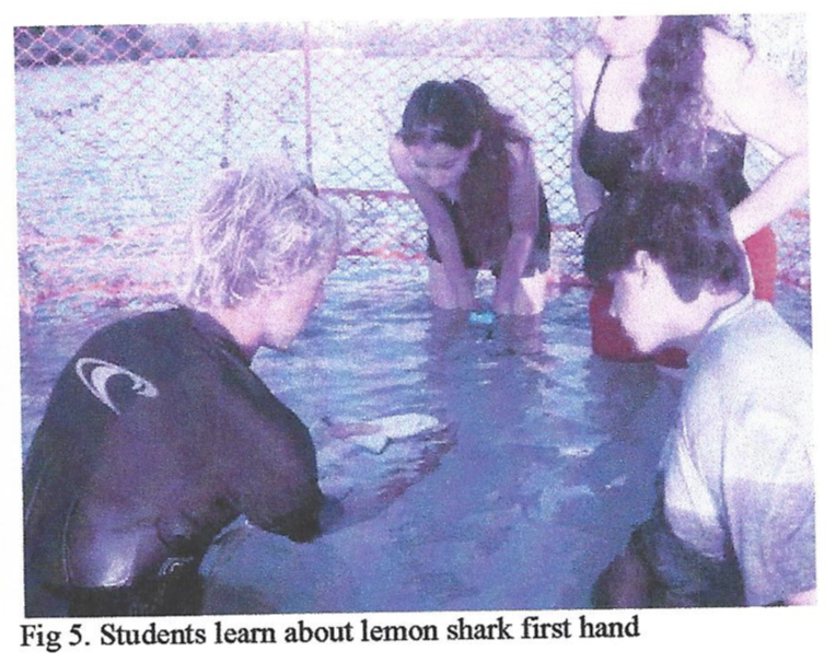 Integrated Teaching at the Shark Research Program for At-Risk Students of Dade and Other Florida Counties