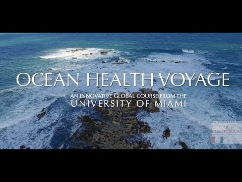 "Creating ""Media Building-Blocks of Environmental Knowledge"" (MBEK) aka the ""Ocean Health Voyage"""